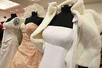 Společenské šaty. Ilustrační snímek.