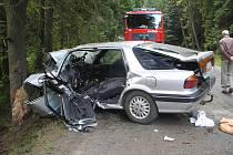 Řidič automobilu narazil do jehličnatého stromu.