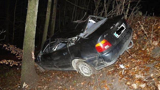 Audi skončilo ve stromě.