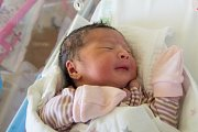 NGUYEN THANH TRUC se narodila mamince Le Thi Mai ze Železného Brodu. Měřila 50 cm a vážila 3,57 kg.