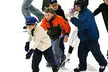 Karneval na ledě pro děti připravil místní hokejový klub a Dům dětí a mládeže Vikýř.