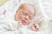 TOBIÁŠ LAHODA se narodil v pondělí 10. dubna mamince Veronice Lahodové z Jablonce nad Nisou. Měřil 52 cm a vážil 3,98 kg.