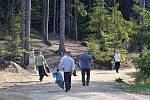 Vězni z Věznice Rýnovice na snímku uklízejí les nad sportovním areálem Břízky. Našli třeba i pneumatiky.