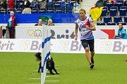 Mistrovství světa v agility pokračovalo 6. října v Home Credit areně v Liberci. Na snímku je česká reprezentantka Martina Magnoli Klimešová se psem Kiki při disciplíně jumping družstev se středně velkými psy.