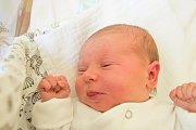 EMILY DRVOTOVÁ se narodila v pondělí 16. dubna mamince Nikole Rehušové z Jablonce nad Nisou. Měřila 50 cm a vážila 3,81 kg.