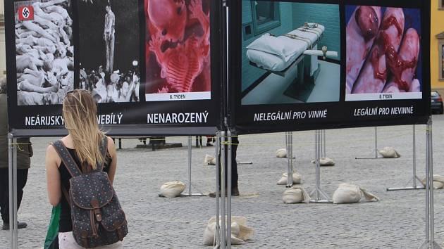 Akce Stop Genocidě