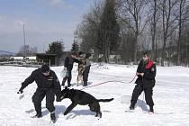 Mezi muži psovody se neztratila ani jedna žena z kynologické skupiny v Liberci. Za kolegy v žádném případě nezaostávala.
