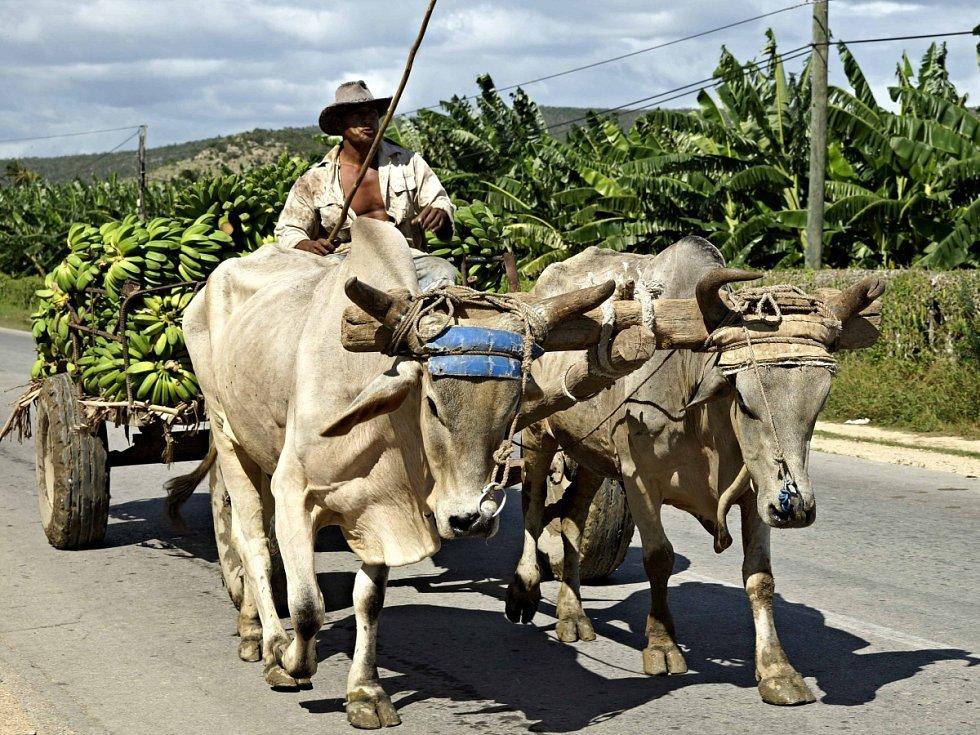 Na Kubě