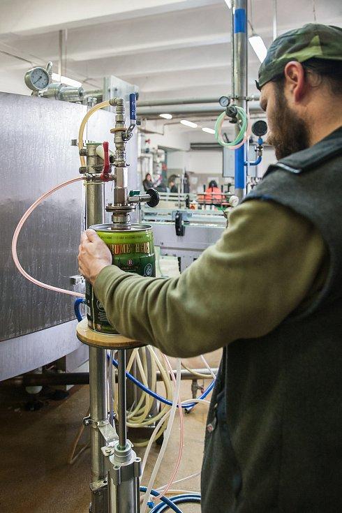 Pracovníci Pivovaru Rohozec plní a zátkují plechové soudky s pivem ručně. Snímek je z 23. listopadu.
