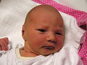 Elin Dlouhá se narodila Darině Dlouhé a Petrovi Mlynářovi z Liberce 9.11.2016. Měřila 51 cm a vážila 3340 g