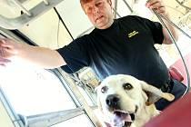 Vyhledávání drog ve vagonech v rámci Mezinárodního mistrovství psovodů služebních psů Celní správy prováděli psovodi se svými psy na libereckém nádraží.