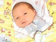 Tobias Horn se narodil Katce a Lukášovi Hornovým z Liberce 24. 11. 2014. Měřil 49 cm, vážil 3300 g.