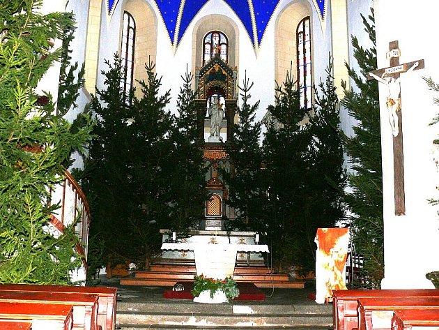 Interiér kostela sv. Víta v Příchovicích se změnil k nepoznání. Zaplnily jej tradičně vzrostlé smrky. Takovou mimořádně bohatou výzdobu zde připravují každým rokem už dvacet let. Na přípravě se podílí mládež, která sem na farnost v Příchovicích jezdí.