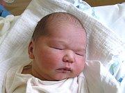 ANNA HOŘÁKOVÁ se narodila Aleně a Janovi Hořákovým z Malé Skály 20.7.2016. Měřila 49 cm a vážila 3300 g.
