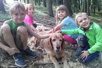 Děti v Lesním klubu Břidlička