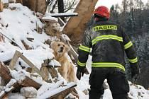 První služební pes libereckých hasičů oslavil 11 let.