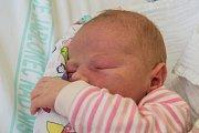 EVELÍNA WINTEROVÁ se narodila ve středu 17. ledna mamince Michaele Winterové z Voděrad. měřila 52 cm a vážila 3,85 kg.