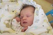 ANTONIE CYHELSKÁ se narodila ve čtvrtek 7. září mamince Anetě Cyhelské z Prahy. Měřila 50 cm a vážila 3,455 kg.