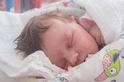ŠTĚPÁNKA HALAMOVÁ se narodila ve středu 6. září mamince Šárce Halamové z Turnova. Měřila 52 cm a vážila 3,60 kg.
