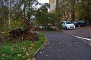 V Libereckém kraji dosahuje síla větru orkánu. Na libereckém sídlišti vyvracel stromy.