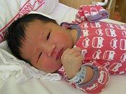 Truong An se narodil Than Thi Hue a Hquyen Van Binh z Turnova 19. 4. 2016. Měřil 50 cm a vážil 4130 g.