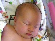 KAROLÍNA PILZOVÁ se narodila Monice a Michaelovi Pilzovým z Jablonce 21. 6. 2016. Měřila 50 cm a vážila 3720 g.