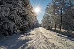Jindřichov nabízí milovníkům lyžování ty nejlepší podmínky, pokud je ovšem dostatek sněhu. V pondělí 18. prosince byla trasa protažena již od jabloneckých sádek až na Jindřichov. a dále Horní Maxov.