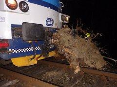 V pátek krátce po půl sedmé večer narazil na železniční trati v Podspálově vlak do spadlého stromu na kolejích. Na místo vyjeli profesionální hasiči i jejich drážní kolegové. Vše se obešlo bez zranění.