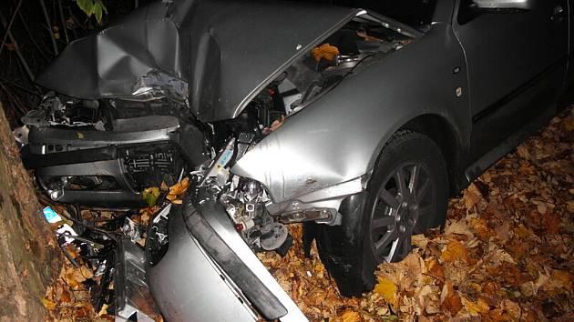 Srna vběhla před vozidlo. Ve středu čtvrt hodiny před šestou hodinou ranní na Proseči boural 23letý mladík ve voze Škoda Octavia do pořádného stromu.