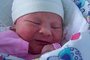 NINA SEIFERTOVÁ se narodila ve čtvrtek 30. listopadu v jablonecké porodnici mamince Janě Vošmikové z Jablonce nad Nisou.  Měřila 48 cm a vážila 3,35 kg.
