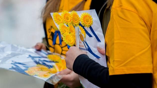 Český dne proti rakovině je znám zejména pro své typické žluté kytičky.