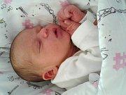 BEATA PETROVÁ se narodila Lucii a Zdeňkovi Petrových z Jesenného 11.6. 2016. Měřila 48 cm a vážila 3130 g.