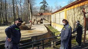 Dobrovolní hasiči z Líšného dovezli do liberecké zoo slonům proutí