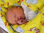 Štěpán Uhlíř se narodil Haně a Janovi Uhlířovým z Liberce 24.8.2015. Vážil 3620 g.