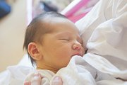 ELIŠKA ŽIVNÁ se narodila v sobotu 7. dubna mamince Nikole Kočové z Liberce. Měřila 50 cm a vážila 3,20 kg.