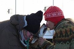 Česká musherka Jana Henychová z Horního Maxova v Jizerských horách má za sebou první desítky kilometrů na náročném severském závodě Finnmarksløpet se spřežením čtrnácti psů. Na snímku při veterinární prohlídce.