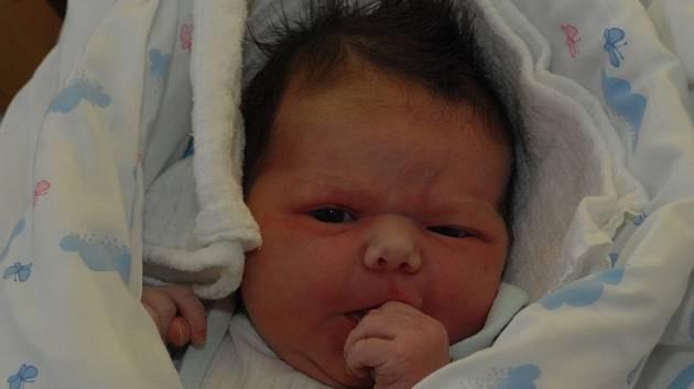 Adéla Šípošová se mamince Štěpánce Šípošové narodila 12. listopadu v jablonecké porodnici. Měřila 50 cm a vážila 3600 gramů.