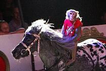 Do Jablonce přijel Cirkus Berousek Sultan. Své šapito rozložil na Tajvanu.