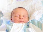 ANTONÍN TULÁČEK se narodil v sobotu 1. července mamince Lence Tuláčkové z Mírové pod Kozákovem. Měřil 53 cm a vážil 4,50 kg.