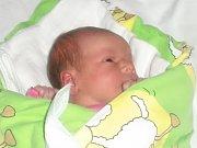 Nela Dvořáková se narodila Tereze a Martinovi Dvořákovým z Rychnova u Jablonce nad Nisou 18. 11. 2014. Měřila 51 cm, vážila 3350 g.