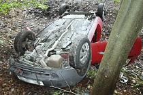 Na silnici vedoucí z Plavů do Držkova havarovala v sobotu před 14. hodinou řidička z Prahy.