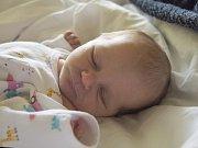 MÁJA DENDYSOVÁ se narodila v pondělí 22. května mamince Kláře Noskové z Železného Brodu. Měřila 47 cm a vážila 2,55 kg.