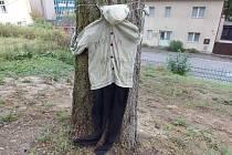 Panák u posledního stromu