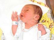 Lukáš Svoboda se narodil Martině a Pavlovi Svobodovým z Janova nad Nisou 15. 10. 2014. Měřil 52 cm a vážil 3600 g.