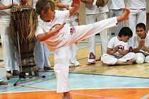 Vem Camará Capoeira.