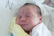 ALENA ŠRÝTROVÁ se narodila v pondělí 18. prosince v jablonecké porodnici mamince Janě Šrýtrové z Českého Dubu. Měřila 47 cm a vážila 3,40 kg.