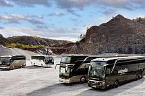 Společnost Umbrella Coach & Buses je součástí skupiny firem sdružující se pod Umbrella Mobility SE. Zaměřují se na krátkodobý i dlouhodobý pronájem nadstandardních autobusů a na poskytování pravidelné linkové dopravy.