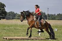 Věra Růžičková z Loužnice na koni Porthos, při závodech westernového ježdění na Sychrově.