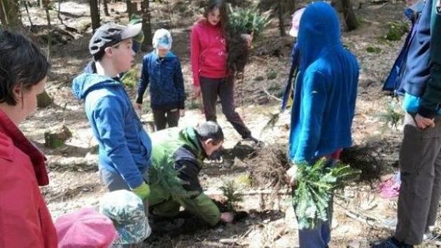 Dobrovolníci sázeli stromky v kokonínském lesoparku.