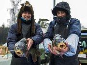 Kapřík patří na vánoční stůl. Ryby z Českého ráje prodávají i dva studenti v Jablonci.